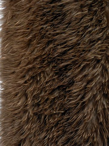 ME002701; Kahu kiwi (feather cloak); Unknown ; detail 21 (image/tiff)