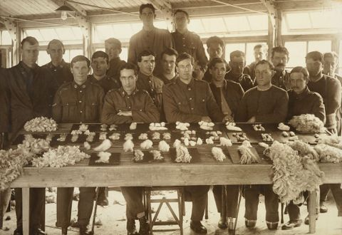 Untitled [William Gemmell and nineteen other WWI soldiers posed around a display of graded wool samples at Oatlands Park, Surrey, England], 1918, England. Maker unknown. Te Papa