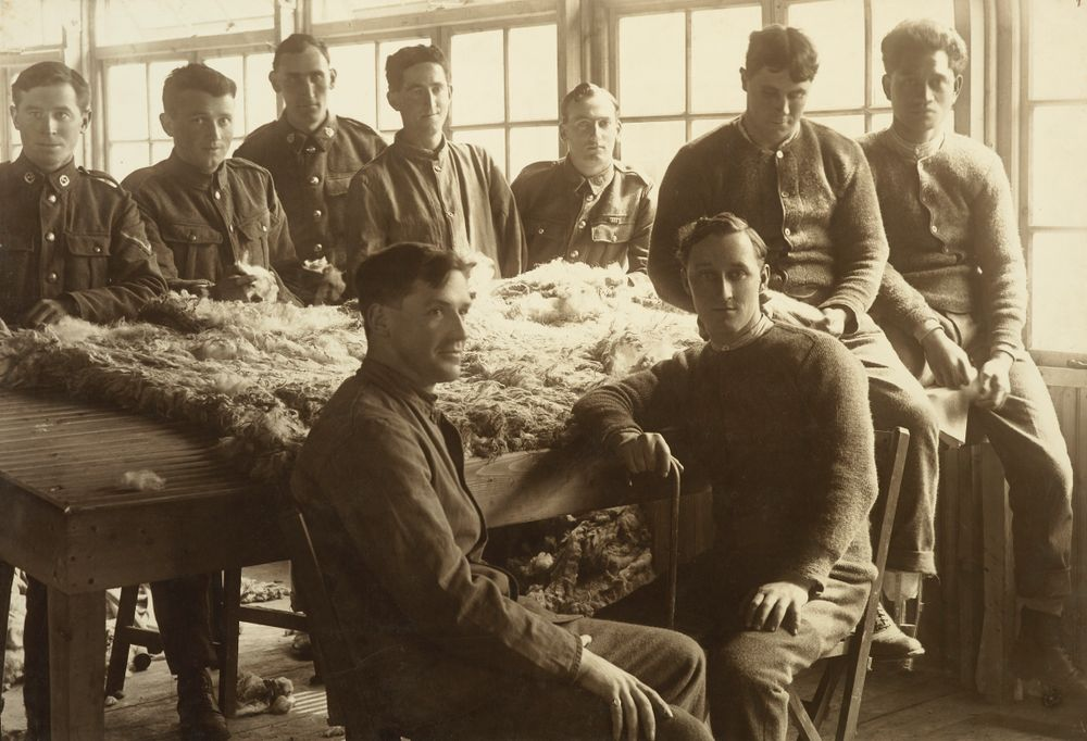 William Gemmell and eight unidentified WWI soldiers posing with sheep fleece at Oatlands Park, Surrey, England - Museum of New Zealand Te Papa Tongarewa