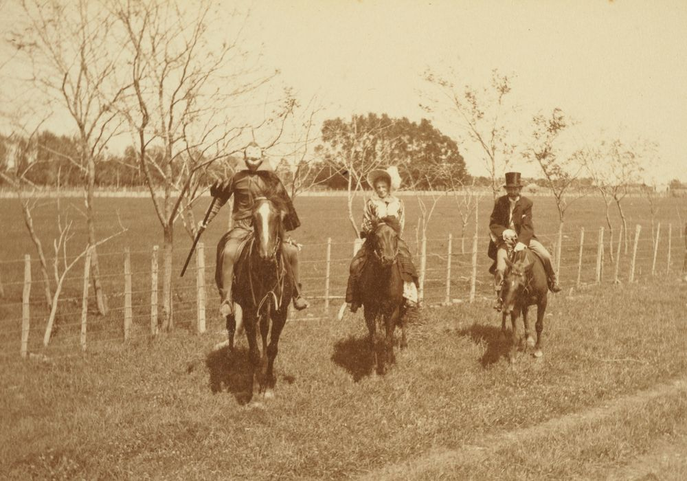 """Mephistopheles, Lady Betty and Lord Algernon ride to the revels"": 'Armistice Celebrations in Levin, Nov. 13. 1918'. From the album: Family photograph album; 1917 - 1920; Adkin, Leslie - Museum of New Zealand Te Papa Tongarewa"