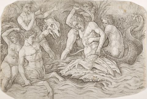 1869-0001-309; Battle of the sea gods.; early 1470s-circa 1490; Mantegna, Andrea ; without frame; colour corrected (image/jpeg)