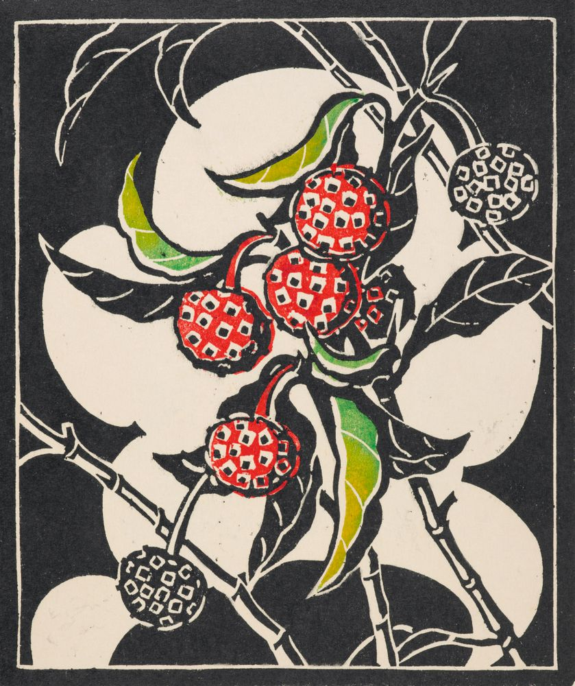 Tree Strawberry Collections Online Museum Of New Zealand Te Papa Tongarewa