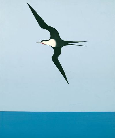 1990-0036-1; Pacific frigate bird I; 1968; Binney, Don ; without frame; colour corrected (image/jpeg)