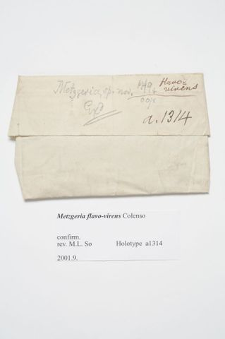 H007833; Metzgeria flavovirens Colenso; holotype; dried - packet; label (image/tiff)