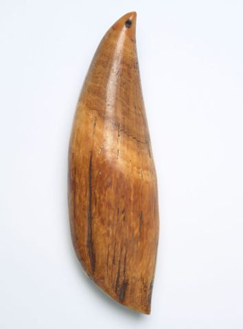 Tabua (Ceremonial whale tooth)