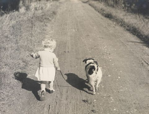 O.009567; Joanna Johnson and dog on country road, England; Circa 1937; Lee-Johnson, Eric ; without frame (image/jpeg)