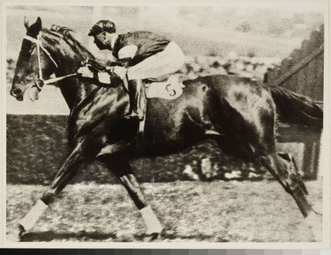 Phar Lap, galloping
