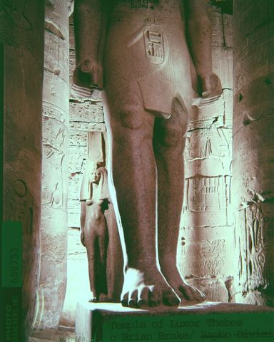 Temple of Luxor, Thebes [legs of figure against a background of columns]