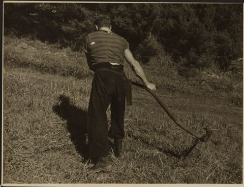 O.011222; Terry Bond at work on his Mahurangi farm; 1944 - 1946; Lee-Johnson, Eric (image/tiff)