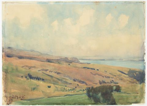 1976-0040-6; Hill landscape near Wellington; 1908; Merton, Owen (image/tiff)