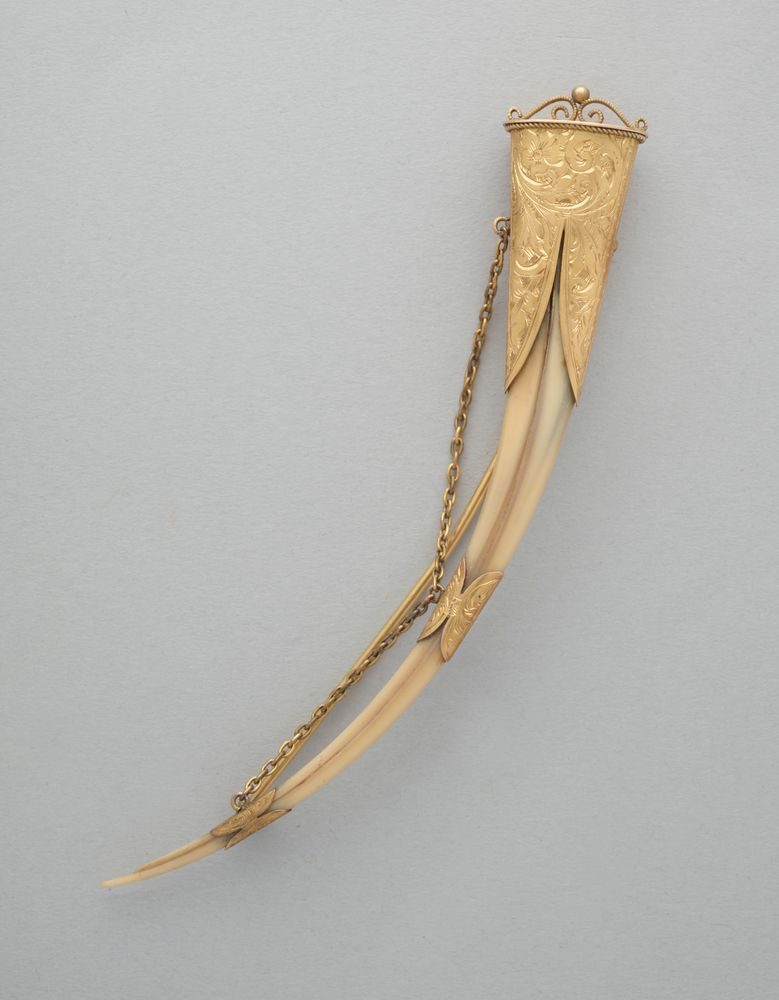 GH005020; Huia beak brooch; circa 1900; Unknown ; view 1