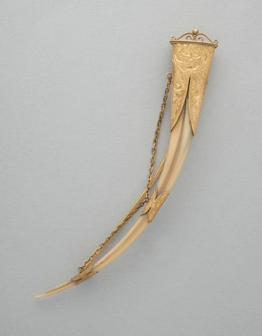 GH005020; Huia beak brooch; circa 1900; Unknown ; view 1 (image/tiff)