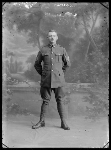 Portrait of an unidentified Sergeant in the New Zealand Army Service Corps