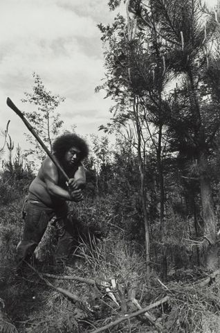The Devil on T.E.P. Canterbury Plains. From the series: Black Power, Christchurch.