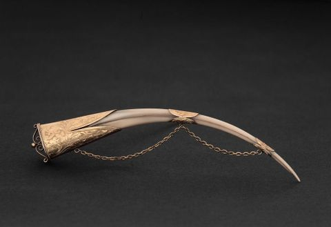 Gold mounted Huia beak brooch with chain GH005020 (image/tiff)