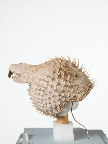 FE010482; Puffer fish helmet; 1900s; Kiribati; Unknown ; view 2 (image/tiff)