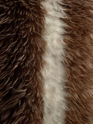 ME001378; Kahu kiwi (kiwi feather cloak); 1800-1900; Unknown; muka, brown kiwi feathers ; detail 001 (image/tiff)