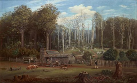 A bush settler's home in New Zealand