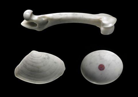 Stone stone, stone bone, stone shell