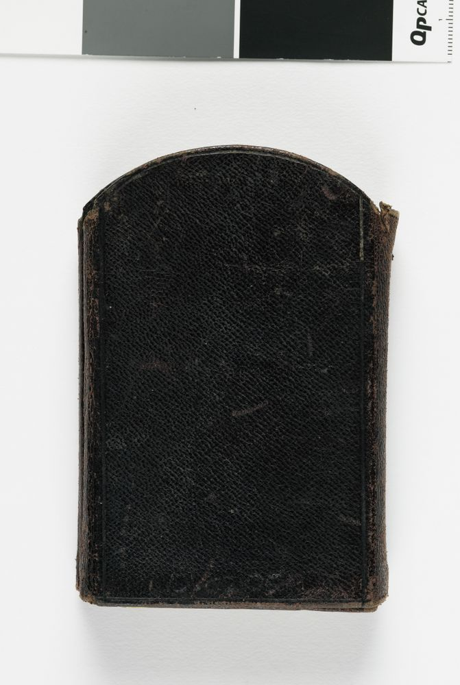 AL000236 Cartes De Visite Album 1870s
