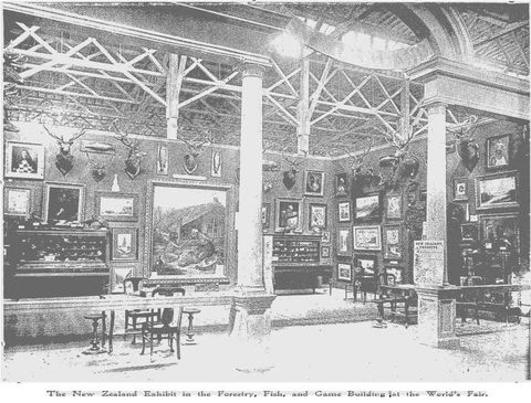Photographer unknown, 'The New Zealand Court in the Forestry, Fish and Game Building at the World's Fair', <EM>The N. Z. Illustrated Magazine</EM>, November 1904, p. 82.