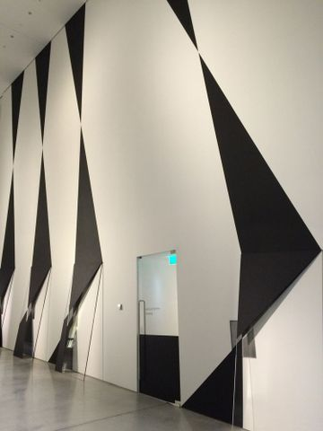Andrew Beck, <em>Double Screen</em>, installation view from <em>Emanations: The Art of the Cameraless Photograph</em>,  29 Apr – 14 Aug 2016. Len Lye Centre at the Govett-Brewster Art Gallery