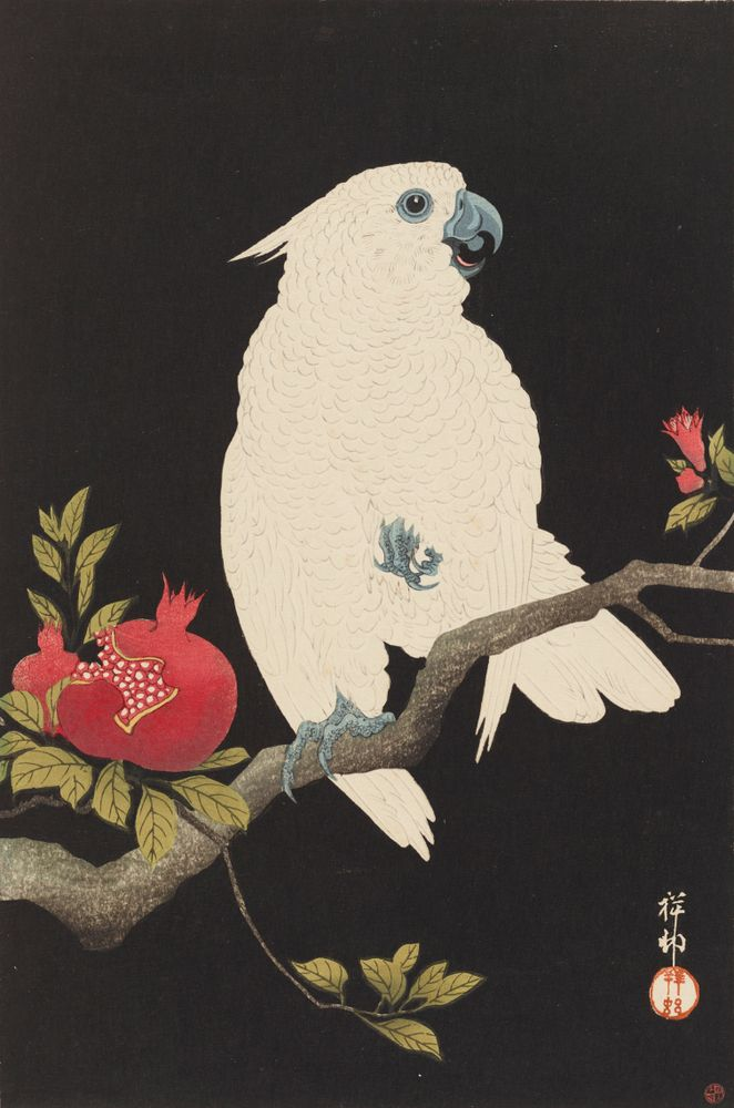 2016-0008-26; Cockatoo and Pomegranate; 1930; Koson, Ohara ; view 1