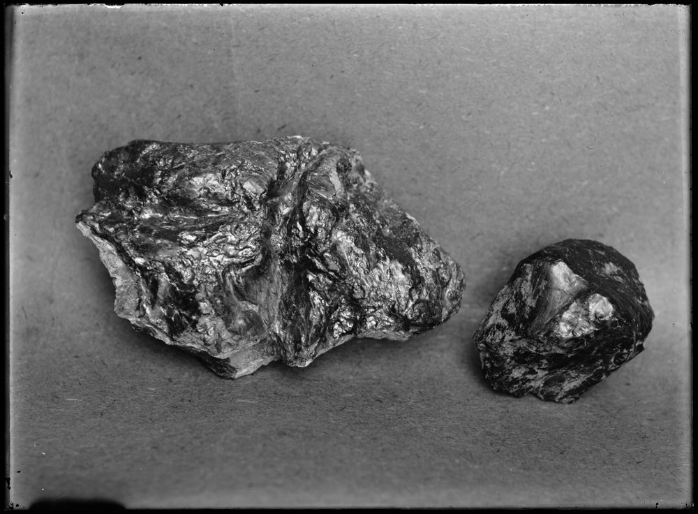 "Leslie Adkin. ""Tararua coal."" Specimens of slickensided carbonaceous slatey shale or argillite on pinched-out cores of greywacke and vein quartz, 9-17 February, 1911. Gelatin silver print. Te Papa (B.026058)"