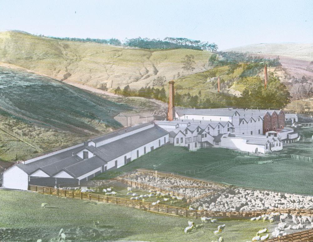 Burnside Freezing Works, near Dunedin   Collections Online