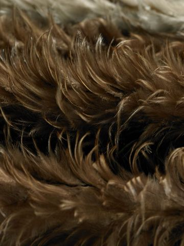 ME001378; Kahu kiwi (feather cloak); 1800-1900; Unknown ; detail 2 (image/tiff)