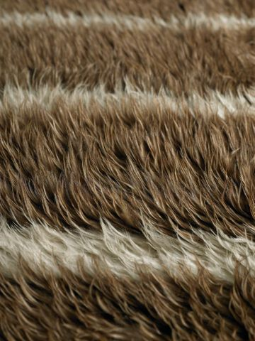 ME001378; Kahu kiwi (feather cloak); 1800-1900; Unknown ; detail 6 (image/tiff)