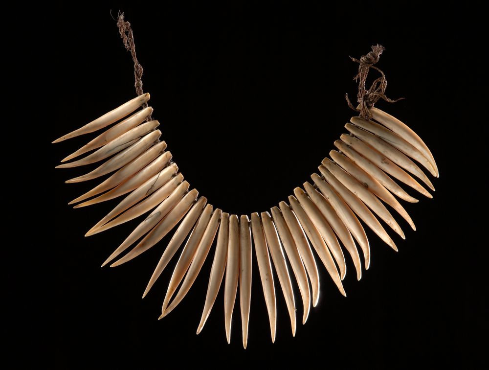 Wasekaseka (sperm whale tooth necklace) | Collections Online
