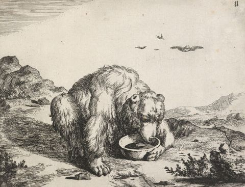 1869-0001-71; The set of the bears. Untitled.; 1664; de Bye, Marcus; without frame (image/jpeg)