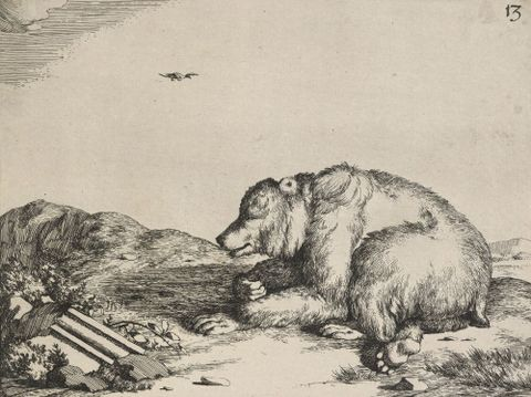 The set of the bears. Untitled plate 13