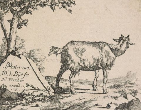 1869-0001-51; Goats and he-goats. Untitled (title plate).; de Bye, Marcus; without frame (image/jpeg)