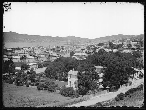 D.000003; City from Wadestown; 1877; Bragge, James (image/tiff)