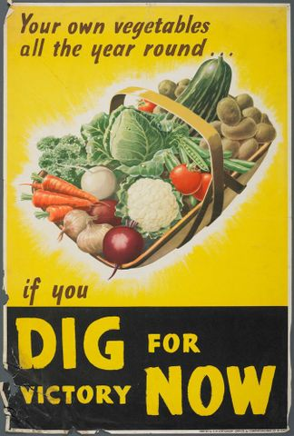 GH015453; Poster, 'Your own vegetables'; Early 1940s; Chromoworks, Ltd. (image/jpeg)