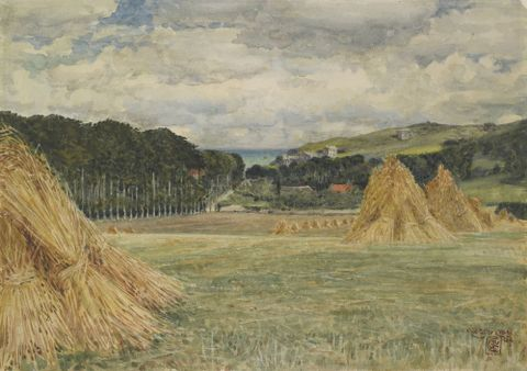 Harvest field, Normandy